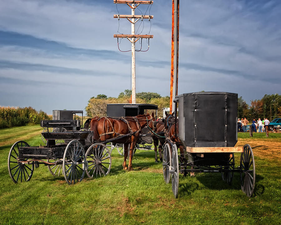 Amish At The Auction Photograph