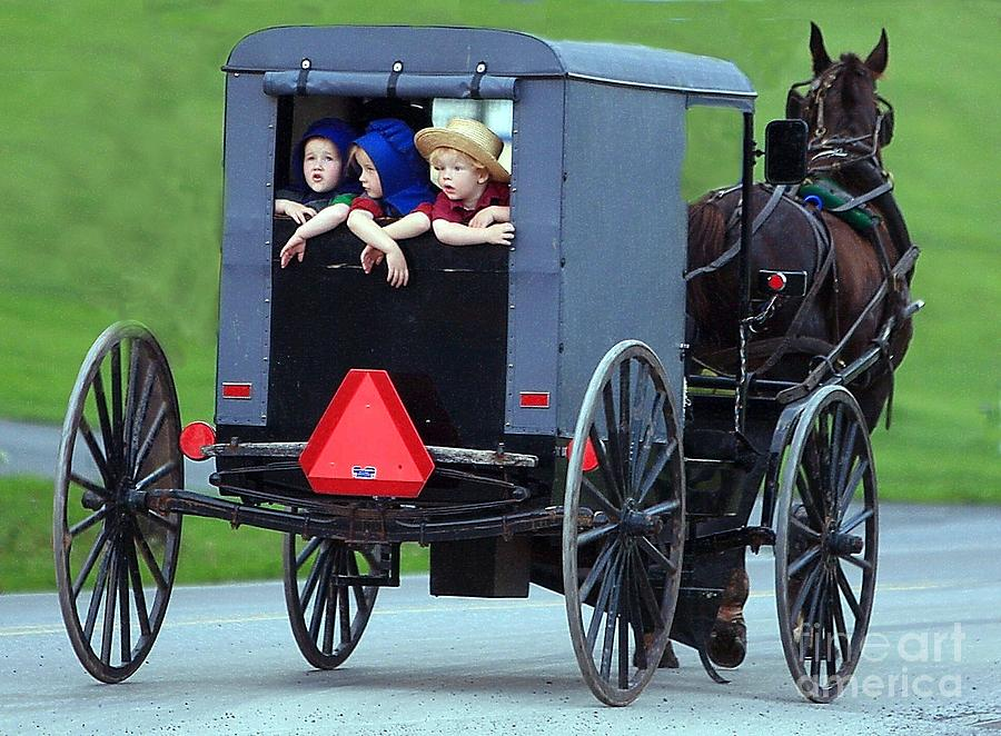 Amish Country Tour Photograph