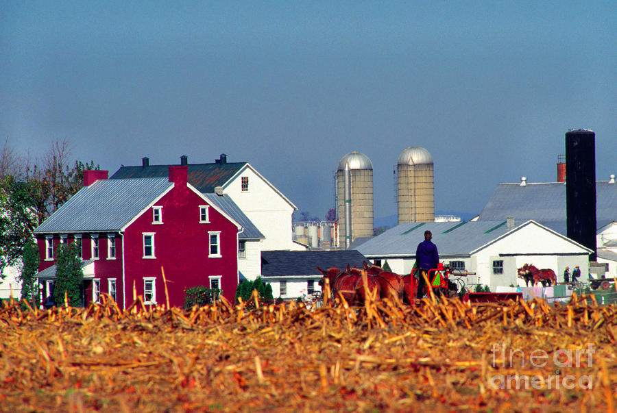 Amish Farm Photograph  - Amish Farm Fine Art Print
