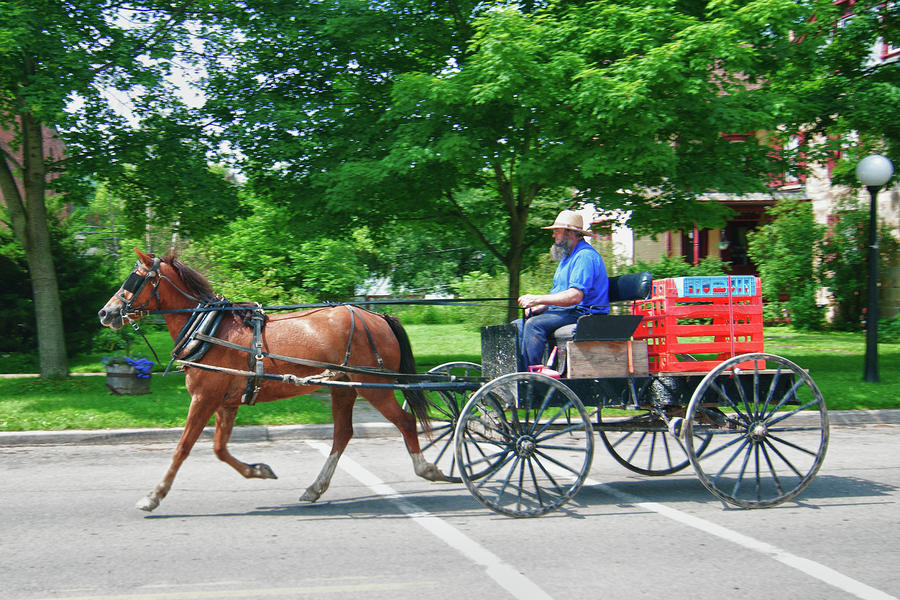Amish Merchant 5671 Photograph