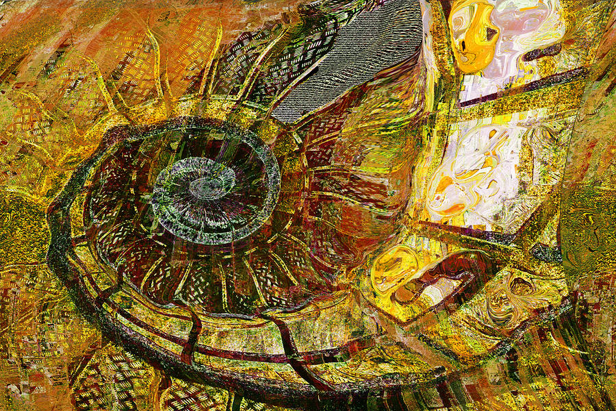 Ammonite Painting  - Ammonite Fine Art Print