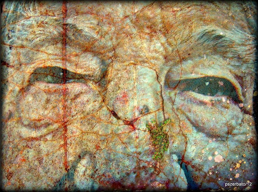 Elder Digital Art - Amore E Sogni Mai Eta by Paulo Zerbato