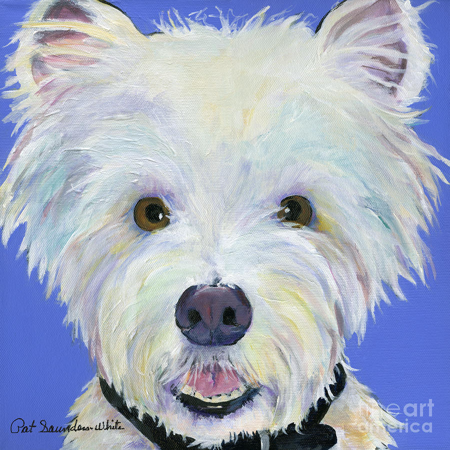 West Highland Terrier Painting - Amos by Pat Saunders-White