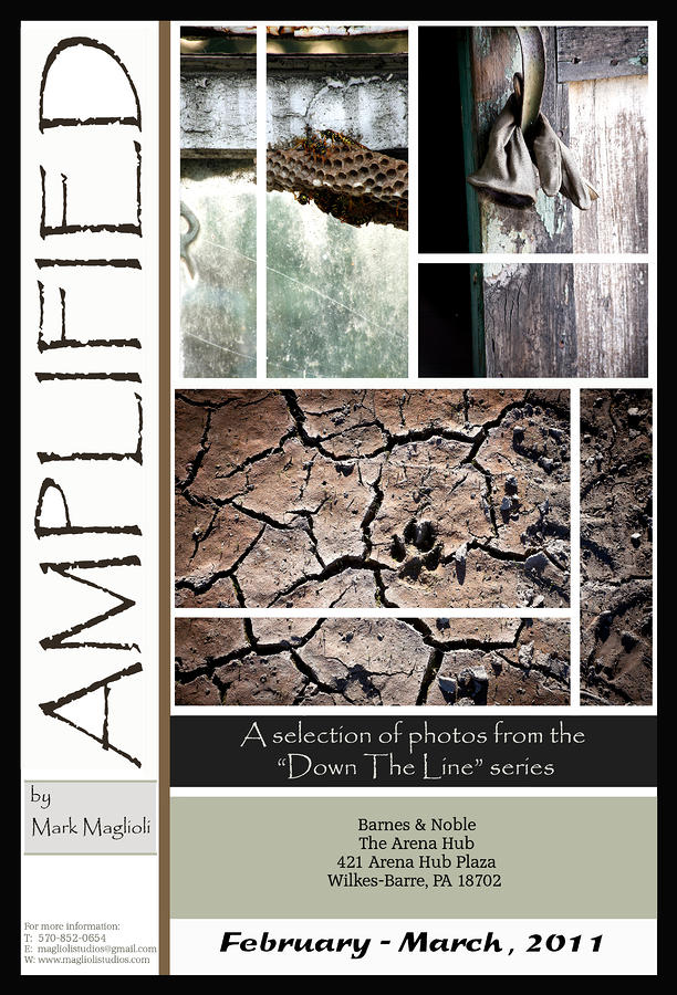 Amplified Poster Photograph  - Amplified Poster Fine Art Print