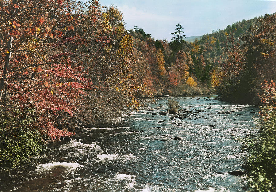 tennessee Photograph - An Autumn Scene Along Little River by J. Baylor Roberts