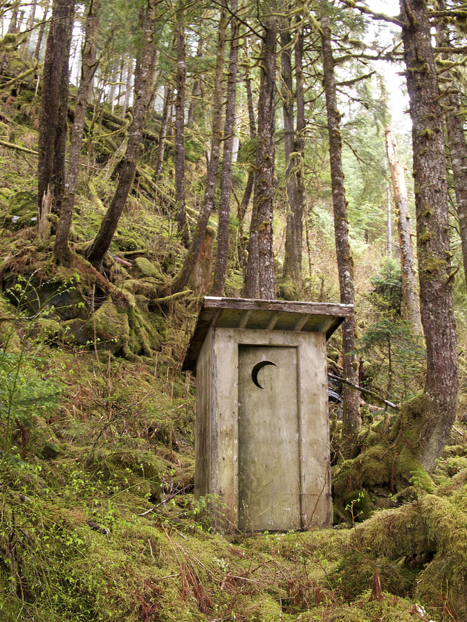 An Outhouse In A Moss Covered Forest Photograph