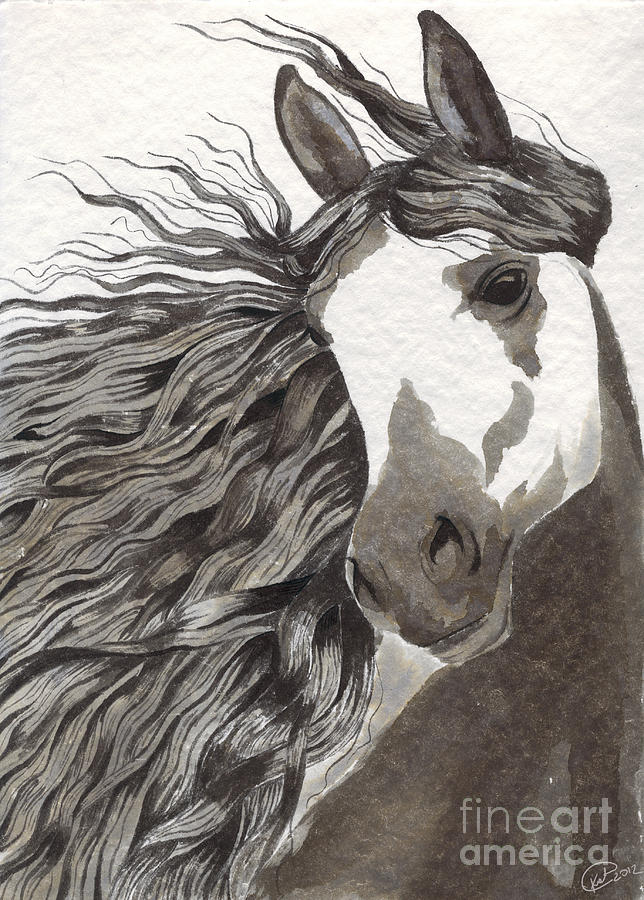 Andalusian Horse Painting  - Andalusian Horse Fine Art Print