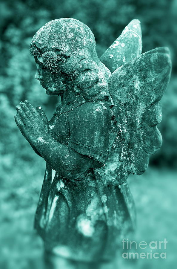 Angel Prayer Photograph  - Angel Prayer Fine Art Print