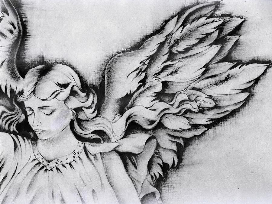 Pictures gt angel wing pencil drawing