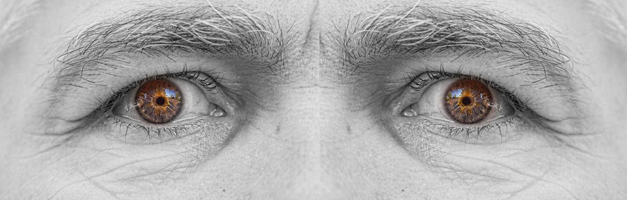 Angry Eyes Photograph