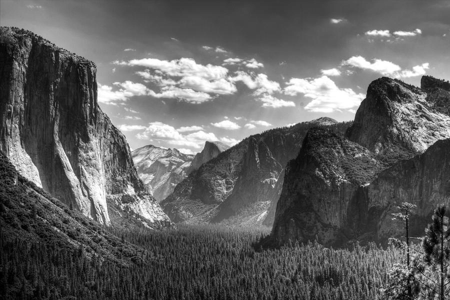 the life and work of ansel adams a famous american photographer Ansel adams musician, teacher, scientist, advocate, conservationist—these are some of the terms that describe the most renowned photographer in american history.