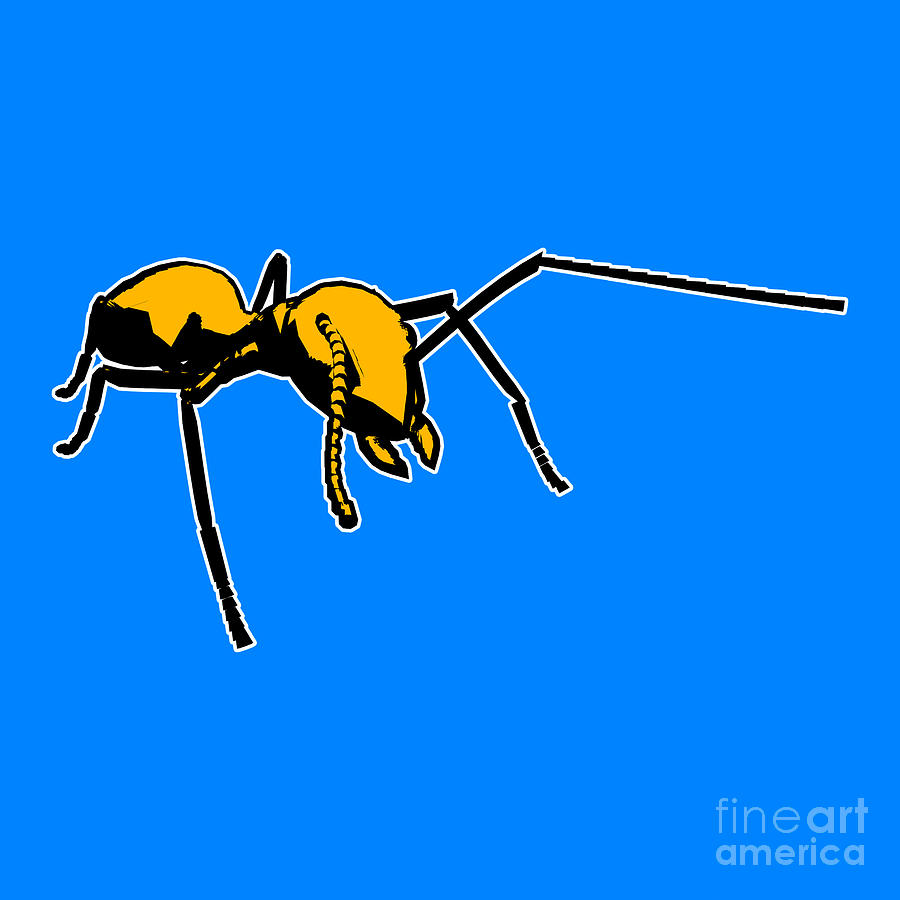 Ant Graphic  Painting  - Ant Graphic  Fine Art Print
