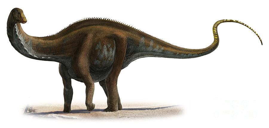 Apatosaurus Excelsus, A Prehistoric Era Digital Art