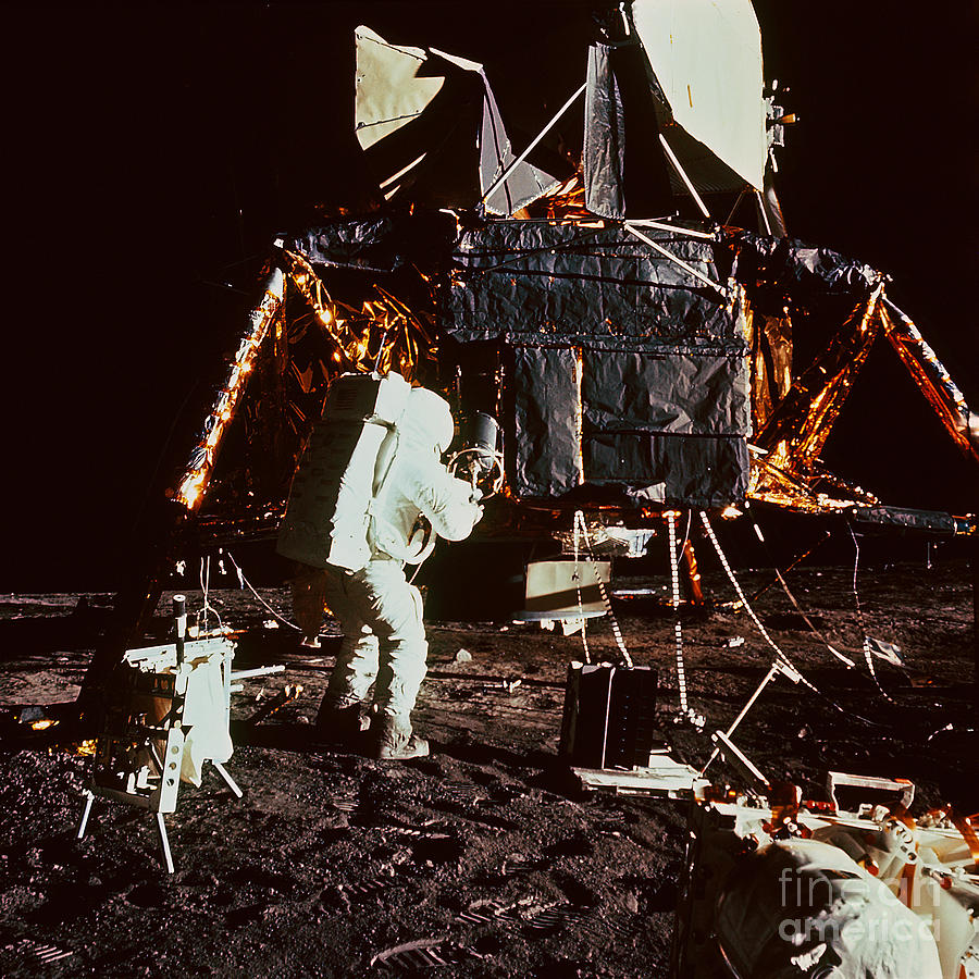 Apollo 12 Astronaut On The Moon Photograph by Nasa