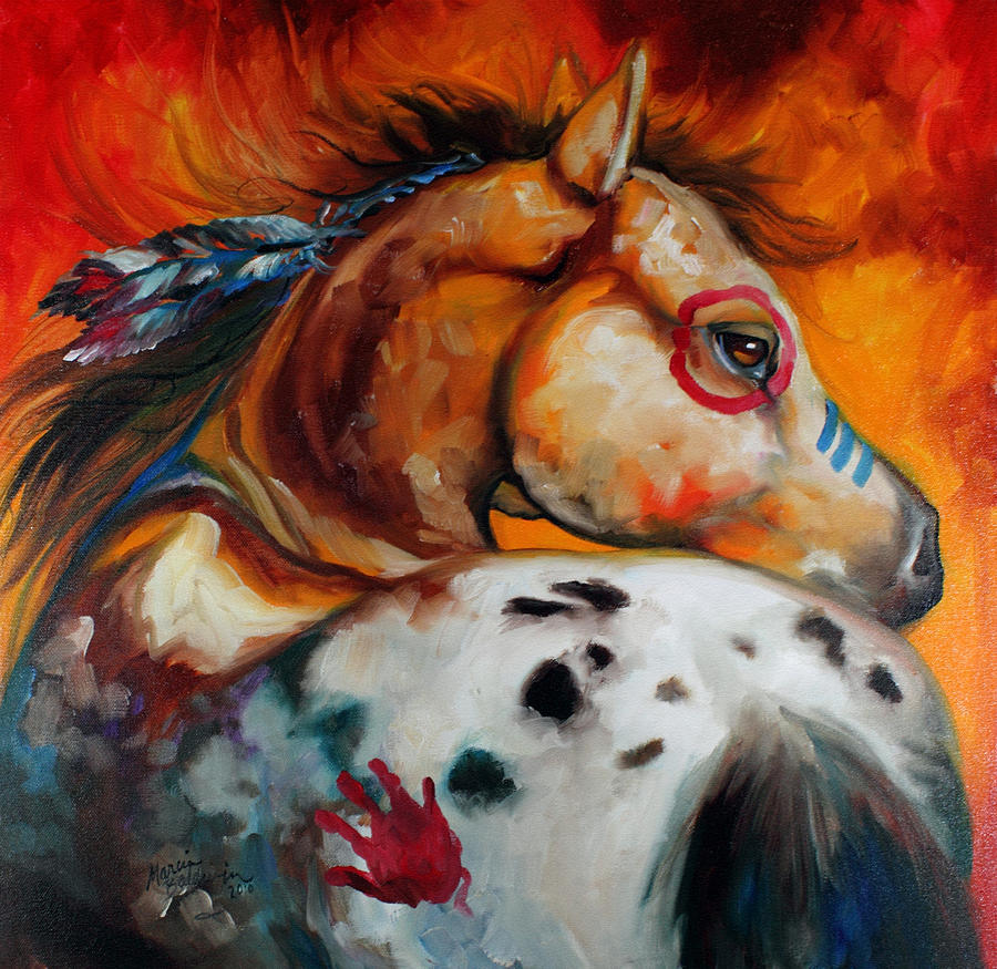 Appaloosa indian war pony by marcia baldwin Fine art america
