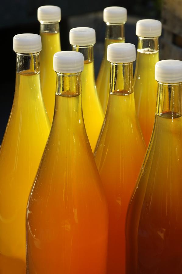 Apple Juice In Bottles Photograph  - Apple Juice In Bottles Fine Art Print