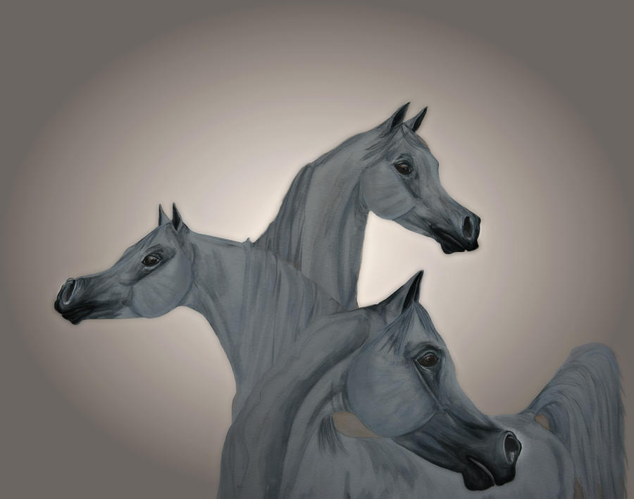 Arabian Stallion Al Aadeed Al Shaqab Painting