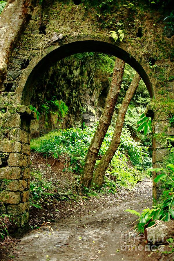 Arch Photograph