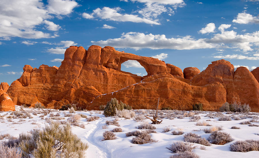 Arches National Park Photograph