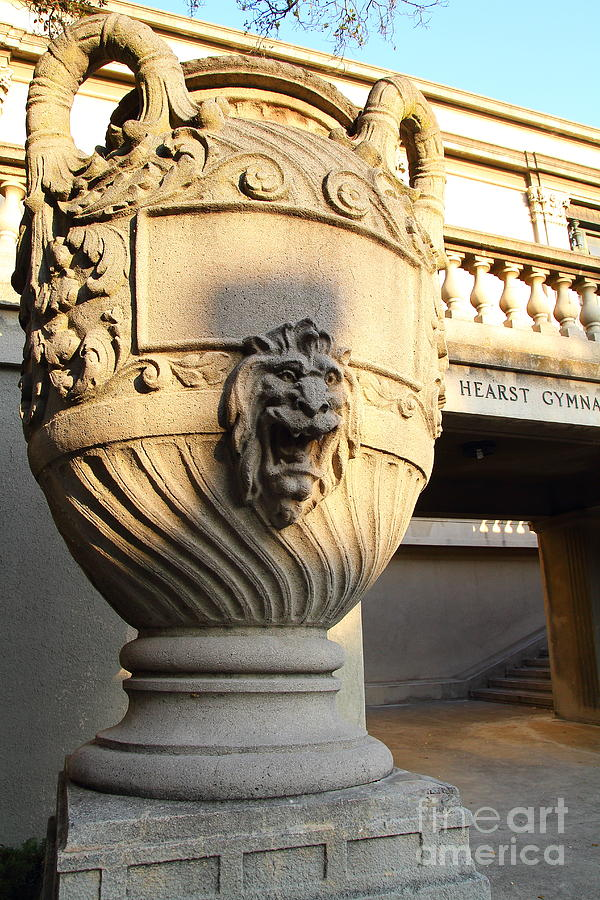 Architectural Detail . Large Urn With Lion Gargoyle  . Hearst Gym . Uc Berkeley . 7d10197 Photograph  - Architectural Detail . Large Urn With Lion Gargoyle  . Hearst Gym . Uc Berkeley . 7d10197 Fine Art Print