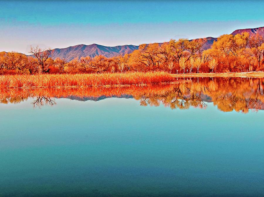 Arizona Dead Horse State Park Photograph