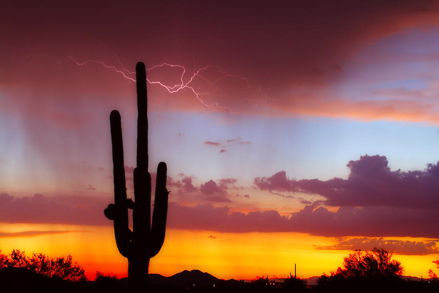 Arizona Lightning Sunset Photograph