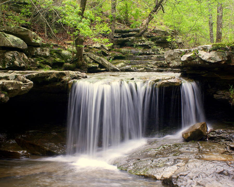 Arkansas Beauty Photograph