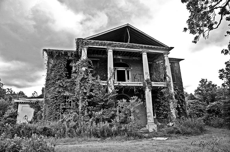 Arlington Photograph - Arlington Ravaged by Cheri Randolph