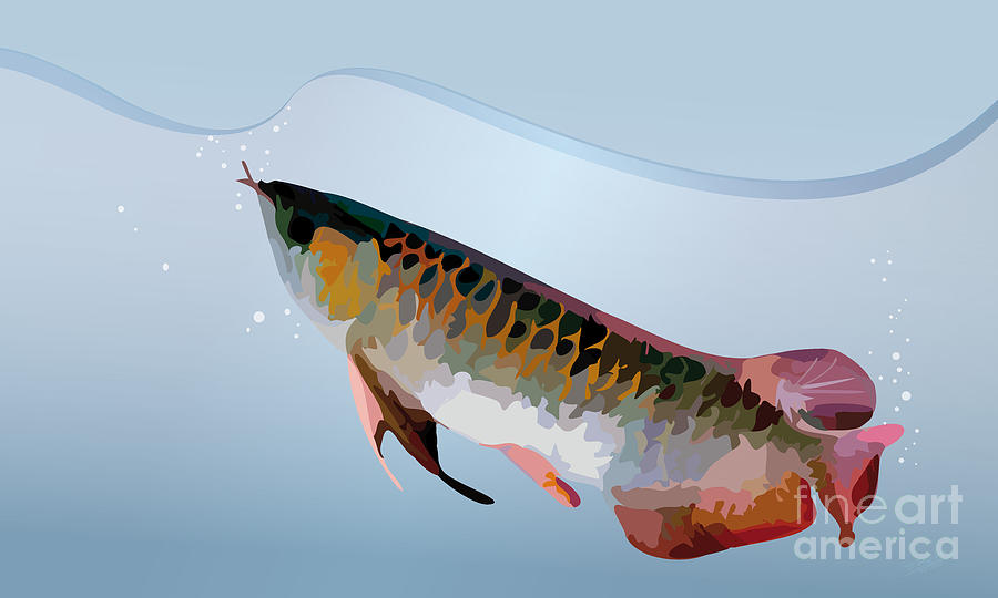 Arowana-01 Digital Art