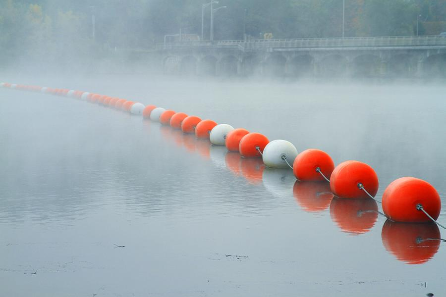 Fog Photograph - As The Fog Lifts by Karol Livote