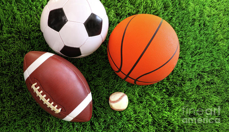 Assortment Of Sport Balls On Grass Photograph  - Assortment Of Sport Balls On Grass Fine Art Print