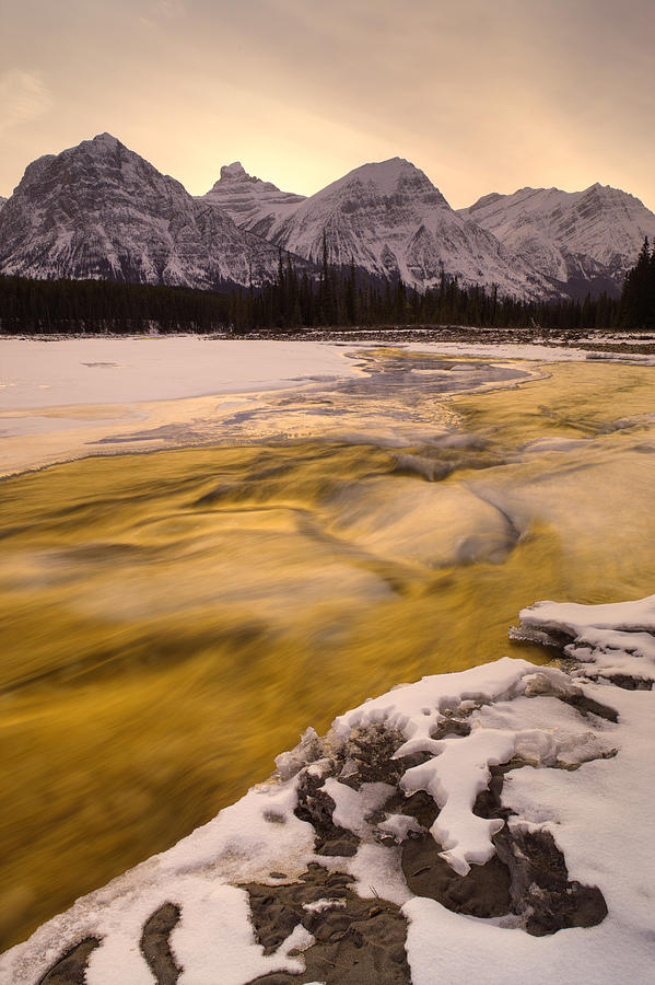 Light Photograph - Athabasca River And Mt Fryatt, Jasper by Darwin Wiggett