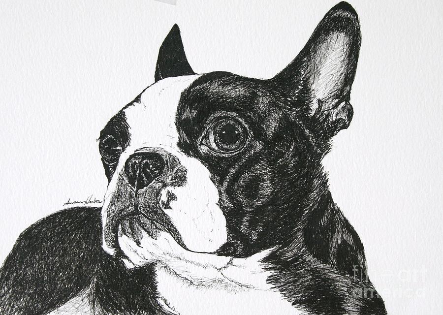 Black And White Dog DrawingDog Black And White Drawing