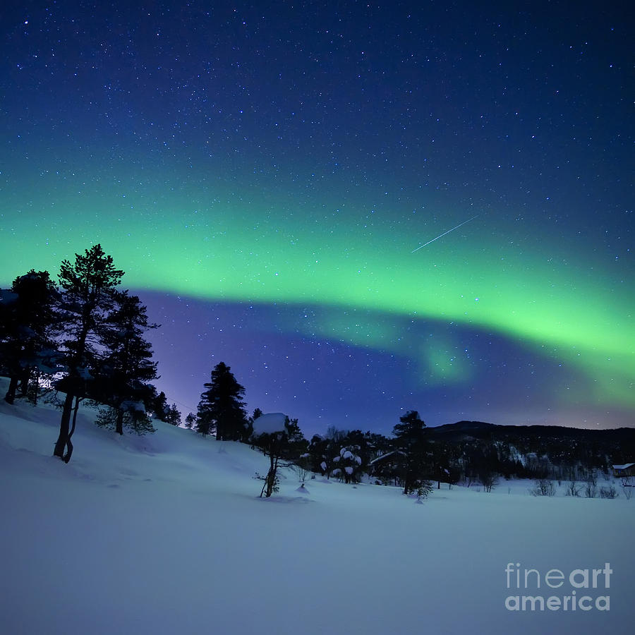 Aurora Borealis And A Shooting Star Photograph