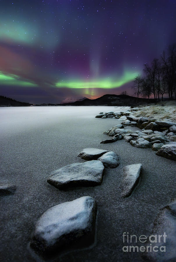 Aurora Borealis Over Sandvannet Lake Photograph  - Aurora Borealis Over Sandvannet Lake Fine Art Print