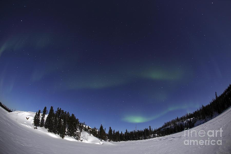 Aurora Photograph - Aurora Over Vee Lake, Yellowknife by Yuichi Takasaka