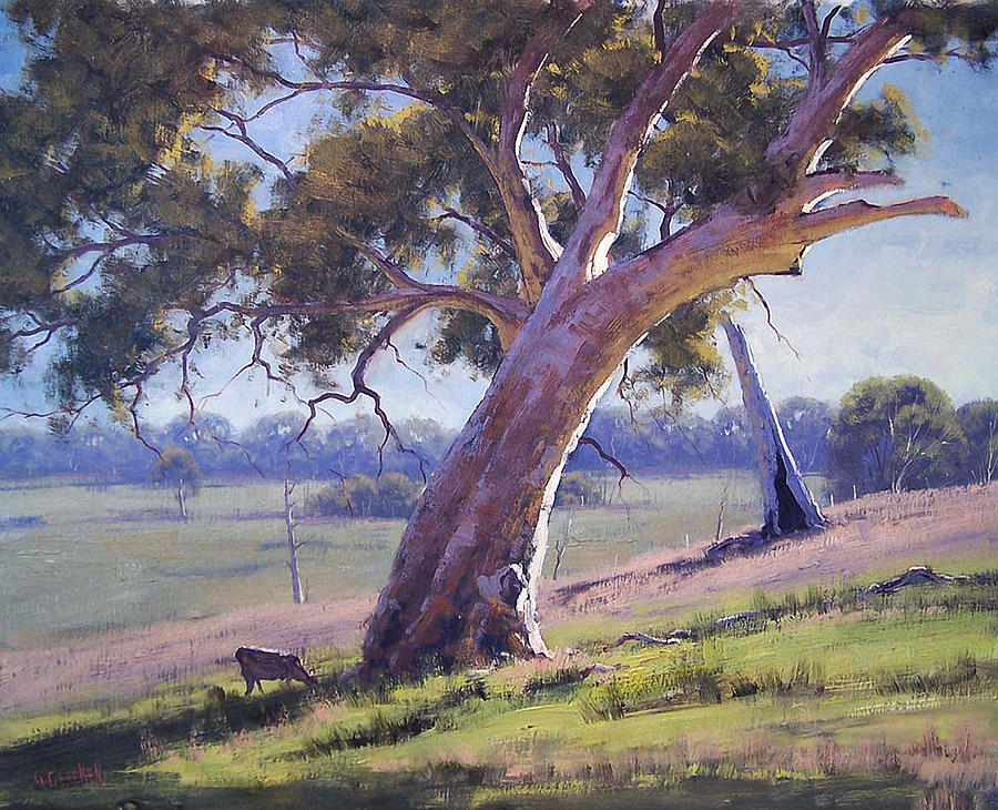 Australian Eucalyptus Tree Painting By Graham Gercken