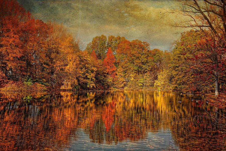Autumn - Landscape - Tamaques Park - Autumn In Westfield Nj  Photograph  - Autumn - Landscape - Tamaques Park - Autumn In Westfield Nj  Fine Art Print