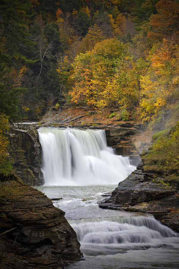 Autumn At The Lower Falls Photograph  - Autumn At The Lower Falls Fine Art Print