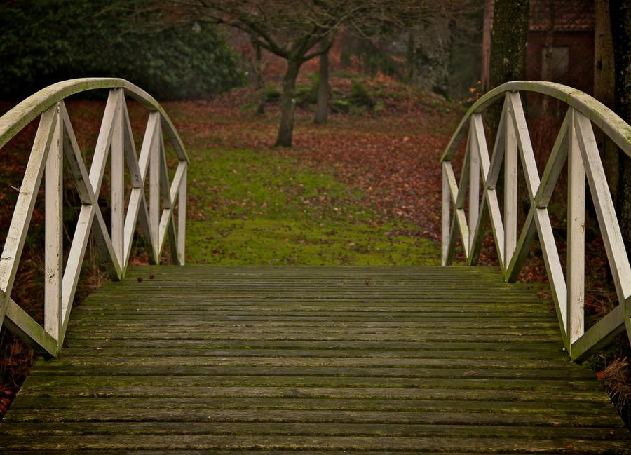 Autumn Bridge Photograph  - Autumn Bridge Fine Art Print