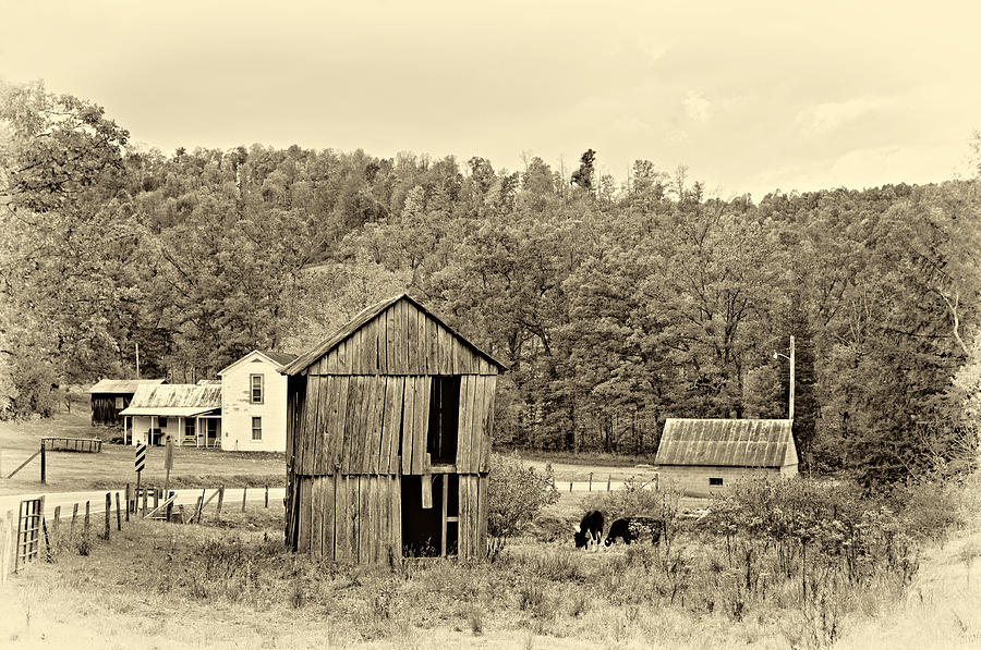Autumn Farm Sepia Photograph