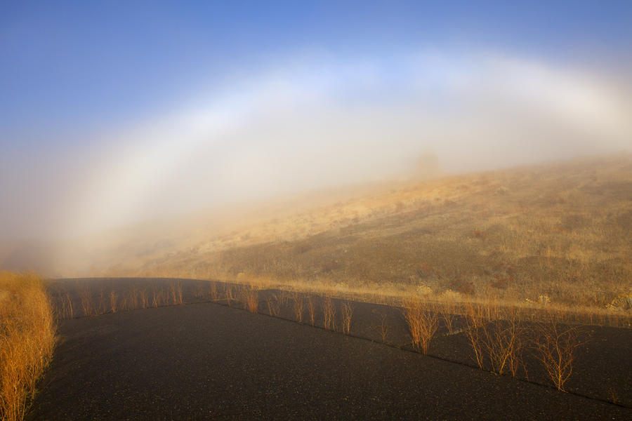 Autumn Fog Bow Photograph