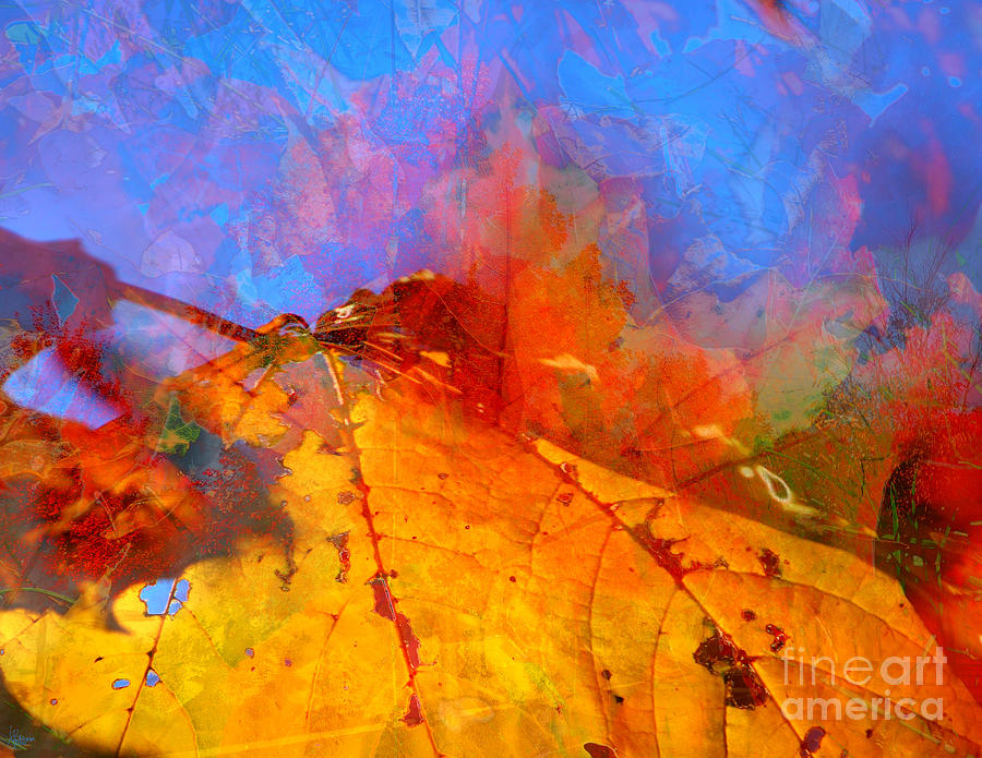 Autumn Fusion 1 Photograph  - Autumn Fusion 1 Fine Art Print