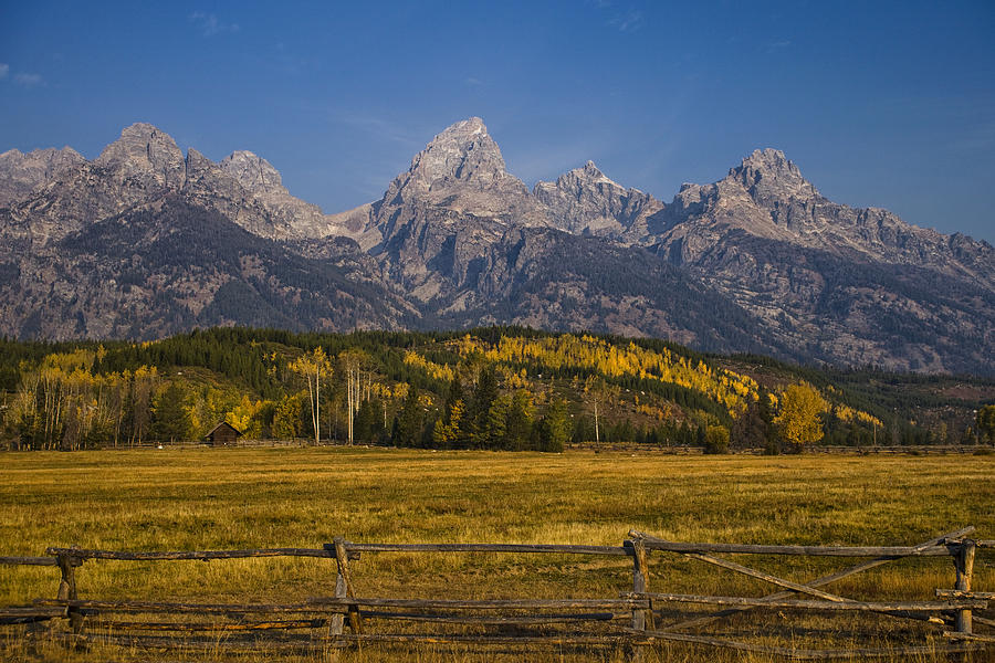 Autumn In The Tetons Photograph