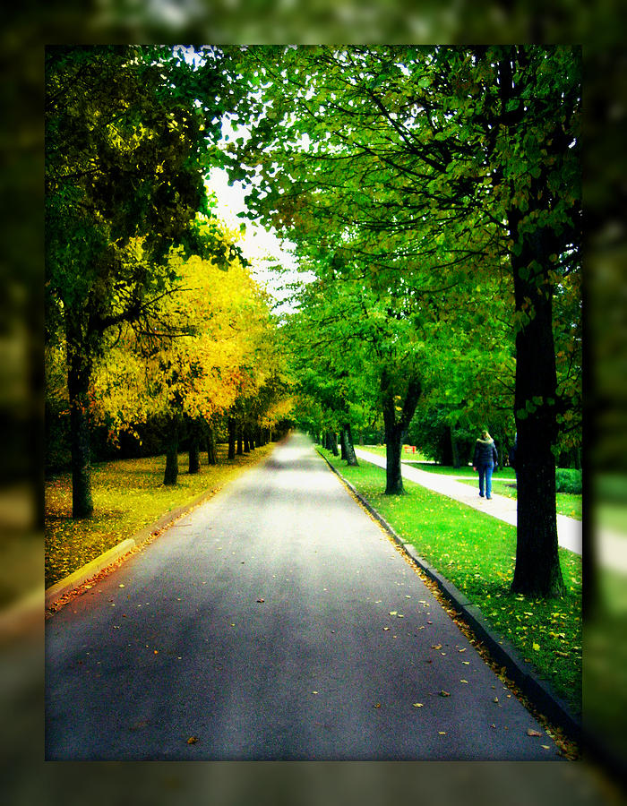 Autumn Is Comming Photograph
