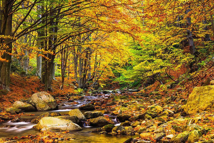 autumn landscape pictures online image arcade