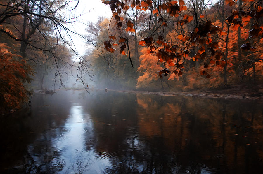 Autumn Morning By Wissahickon Creek Photograph  - Autumn Morning By Wissahickon Creek Fine Art Print