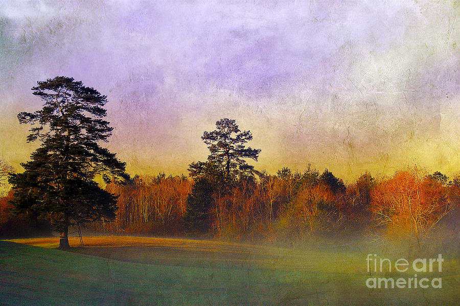 Autumn Morning Mist Photograph  - Autumn Morning Mist Fine Art Print