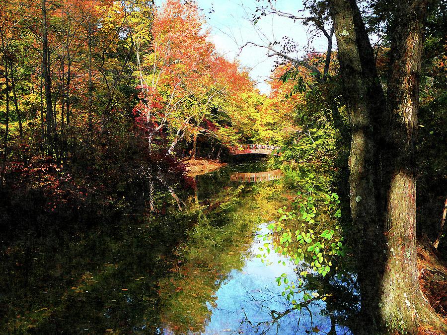 Autumn Park With Bridge Photograph