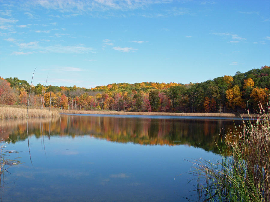 Autumn Pond Photograph  - Autumn Pond Fine Art Print